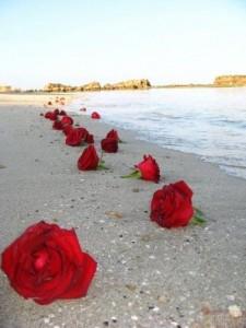 Du Reiki à Aix e nProvence pour la journée de la femme